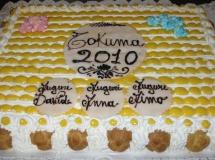 tkm-2010-020